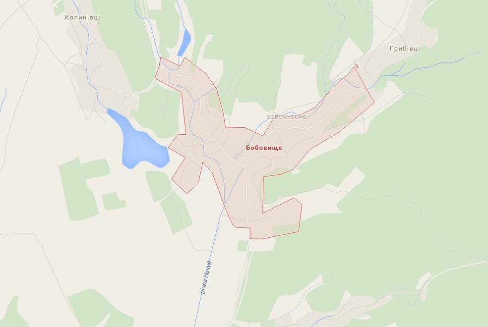 """Двох бійців """"Правого сектора"""" виявили у Бобовищі, село очеплене, бійців переслідують спецпризначенці"""