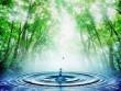 На Закарпатті покращиться якість води