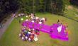 У мережі з'явилось відео з весілля доньки голови закарпатської