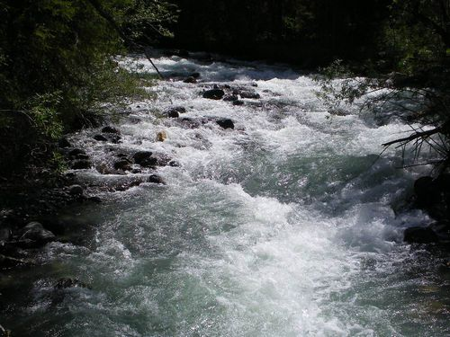 Водойми області продовжують забирати життя закарпатців