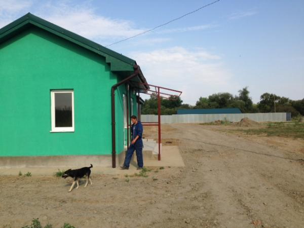 Притулок для тварин в Ужгороді готовий приймати чотирилапих