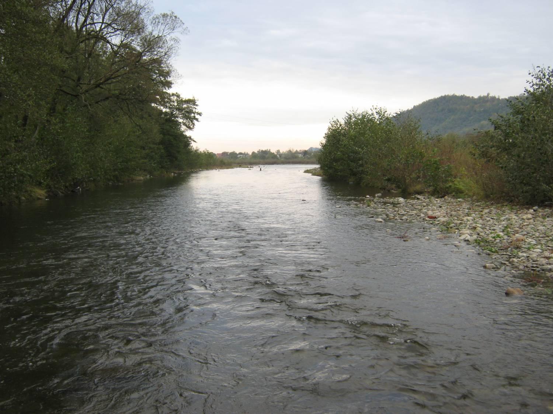 На Закарпатті через аномальну спеку міліють ріки