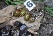 На Закарпатті у лісовому масиві виявили схованку зі зброєю із зони АТО
