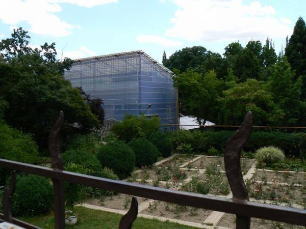 Під час відкритої екскурсії ужгородці відвідають ботанічний сад