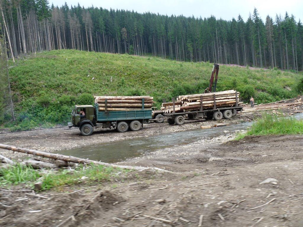 На Ужгородщині затримали вантажівку із 35 кубометрами деревини