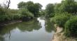 Прокуратура розпочала кримінальне провадження за фактом забруднення річки Боржава, що на Іршавщині