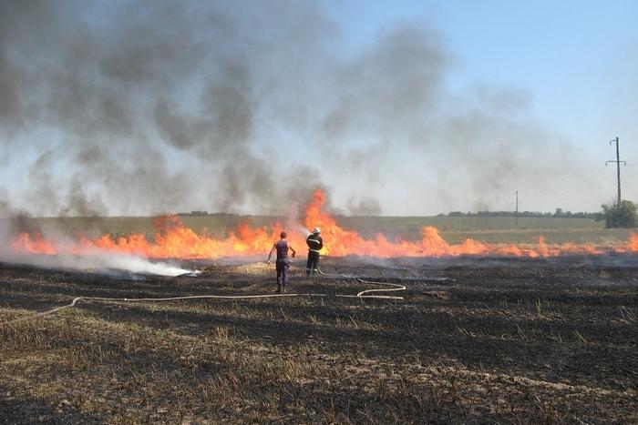 Закарпаття охопили масові пожежі. Рятувальники за три дні зафіксували 74 загорання