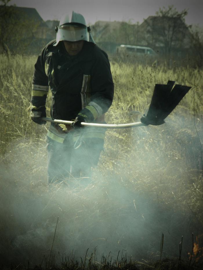 Кількість пожеж на Закарпатті сягнула критичної позначки, – ДСНС