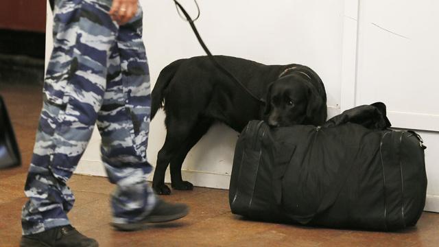 Ужгородські піротехніки шукали підозрілу вибухівку