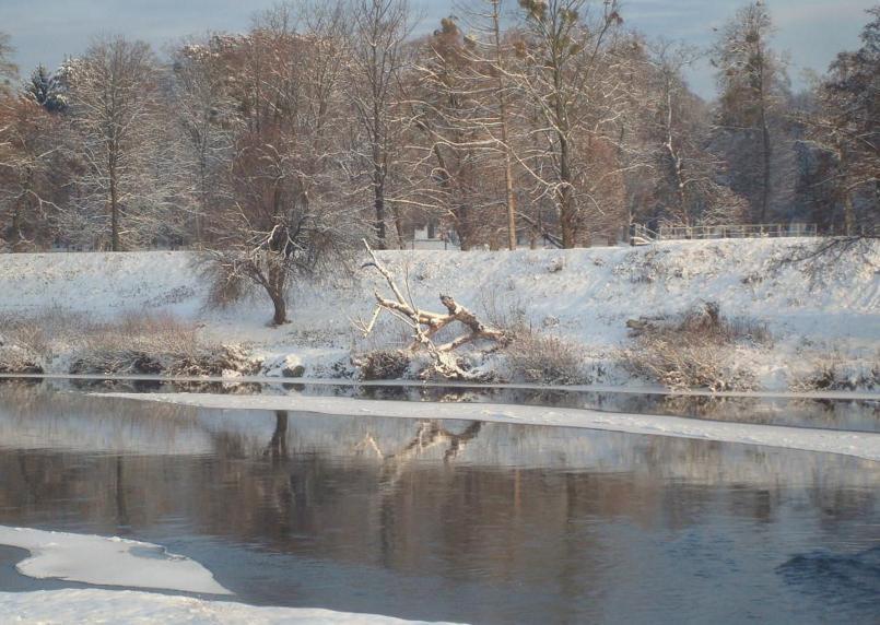 На Закарпатті очікується підвищення рівня води в річках