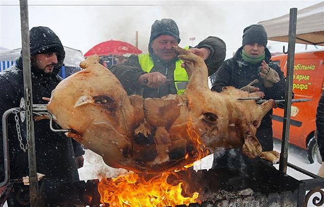 Забій тварин проводитиметься за стандартами ЄС: сільський голова Гечі відповів на протести вегетаріанців