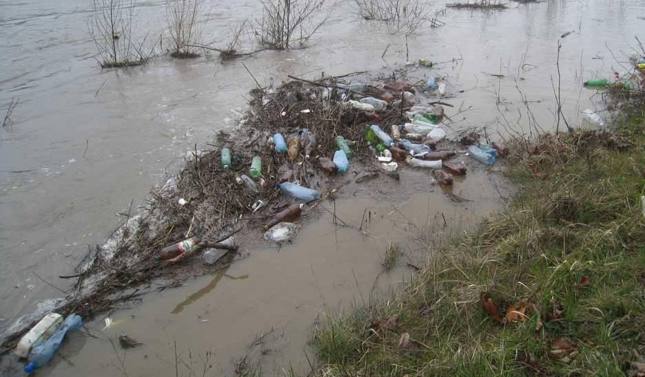 Словаки обурені великою кількістю сміття, яке принесло течією із Закарпаття