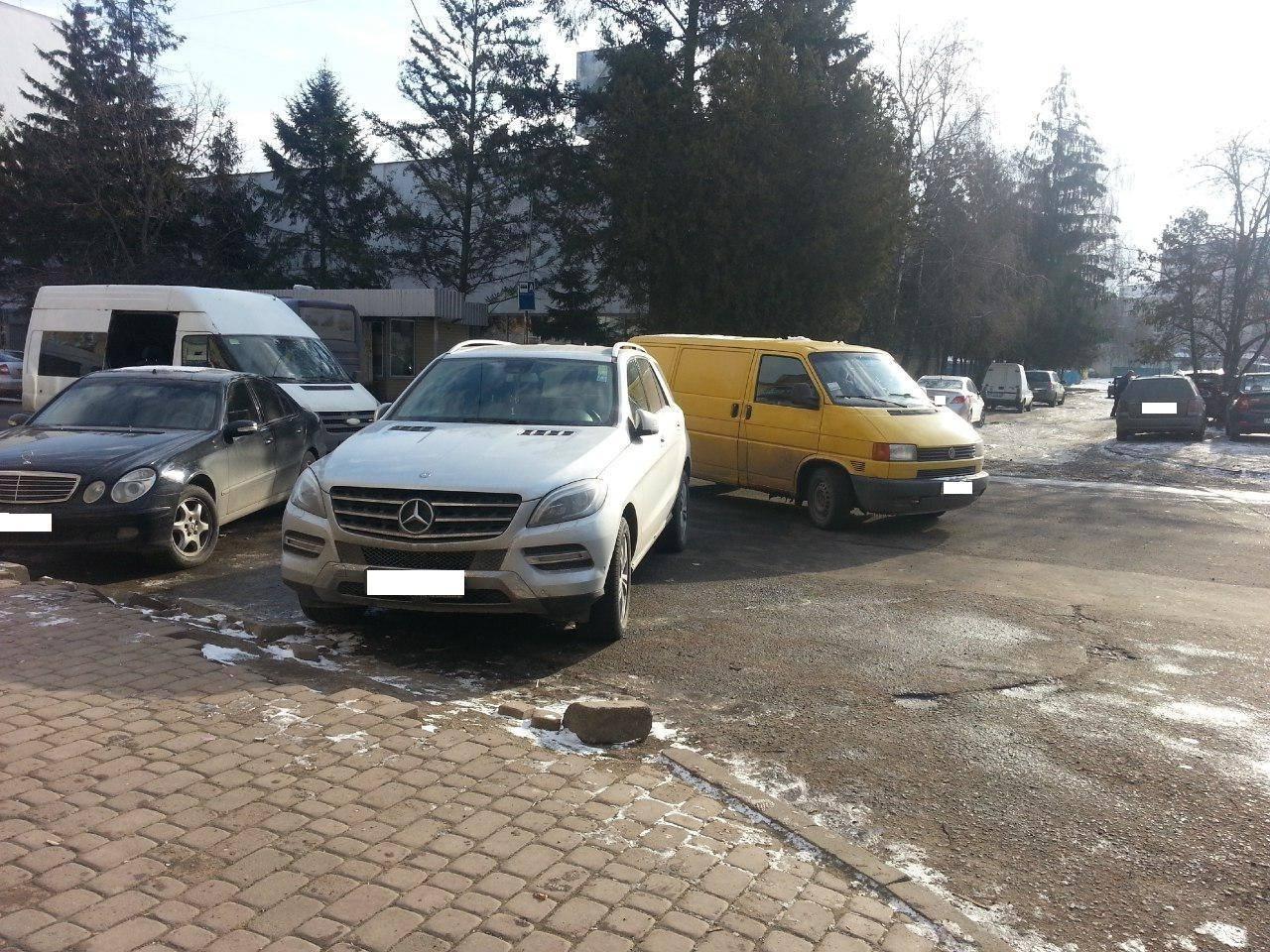 В Ужгороді поліція оштрафувала двох VIP-оленів