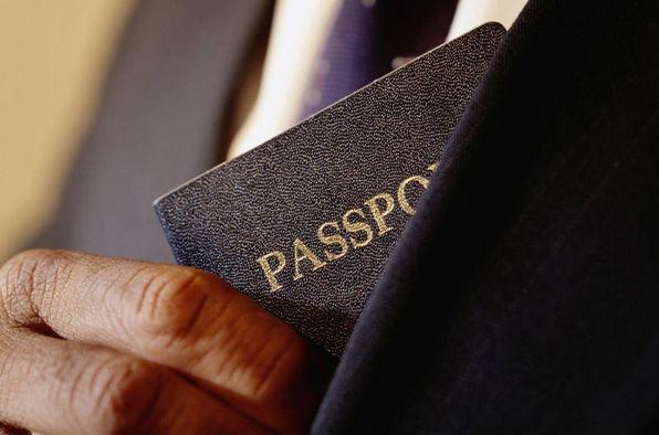 Міністерство закордонних справ України анулювало дипломатичні паспорти братів Балог