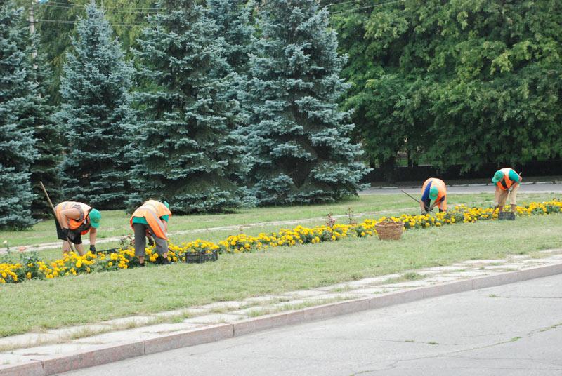 Ужгородська міська влада планує озеленювати місто спільно з науковцями УжНУ
