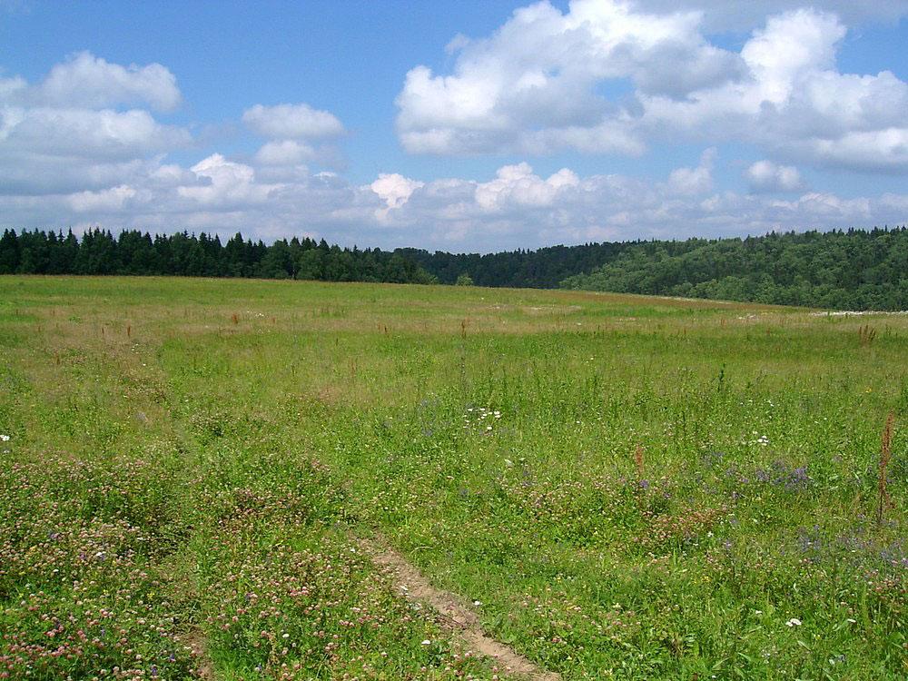 В області зарезервували більше двох тисяч гектарів землі для бійців АТО
