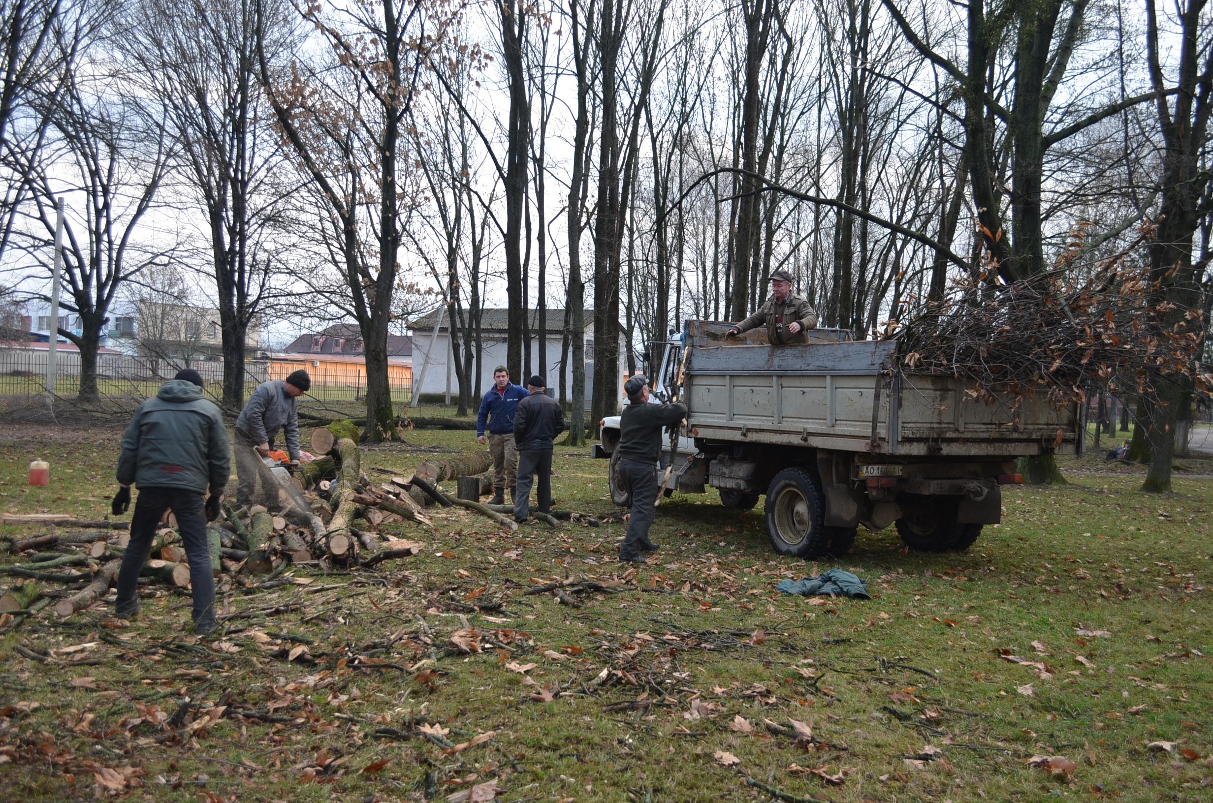 Мукачівські комунальники проводять обрізку дерев у дитсадках та школах міста