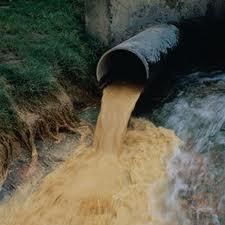 """Через забруднення Латориці """"Мукачівводоканал"""" завдав збитків державі на суму понад 50 тисяч гривень"""