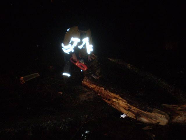 Знеструмлення сіл, водяні затори та повалення дерев на автошляхи: нічна негода на Закарпатті наробила чимало лиха