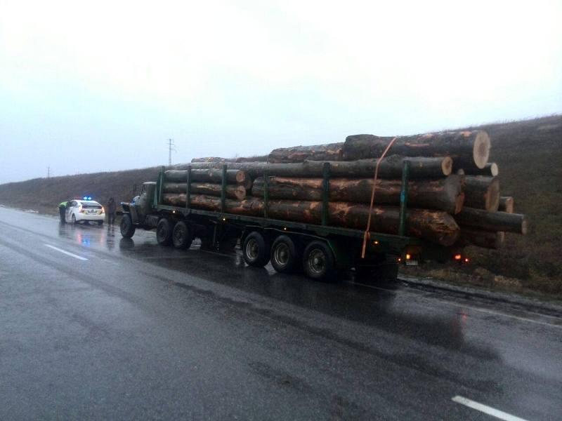 """Неподалік села Середнє поліція затримала вантажівку із """"лівою"""" деревиною"""