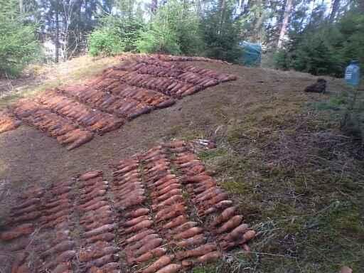 На Воловеччині рятувальники знешкодили снаряди та міни часів Другої світової війни