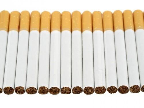 Податківці Закарпаття почали розслідувати два факти незаконного перевезення цигарок