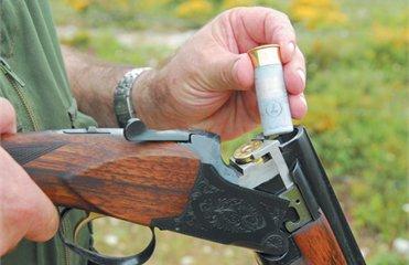 Прокуратура розслідує факт хуліганських дій із застосуванням мисливської зброї на Воловеччині