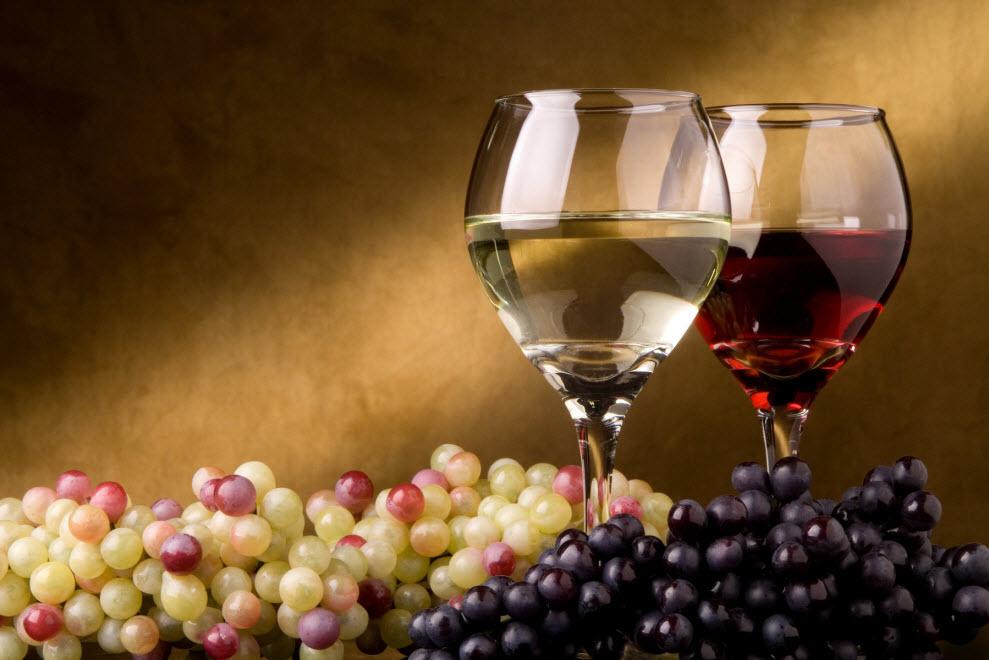 На Закарпатті відбудеться Перший національний виноробний форум