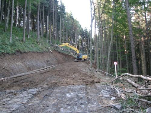 Прокуратура порушила кримінальне провадження щодо завищення вартості виконаних робіт при будівництві лісових доріг