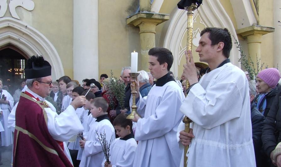 Берегівські римо-католики відзначили квітну неділю