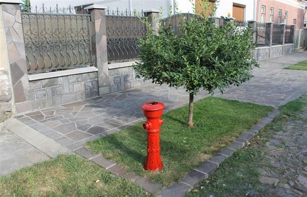 """У місті над Латорицею відбудеться велозаїзд-екскурсія """"Мукачівські гідранти"""""""