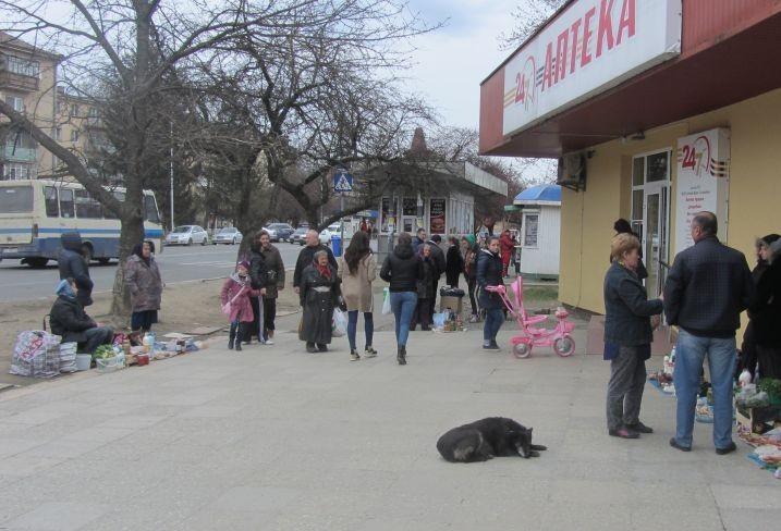 """Ужгород обзавівся новим стихійним ринком, який """"охороняють"""" бродячі собаки"""