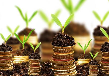 За використання землі закарпатці сплатили понад 46,8 млн грн