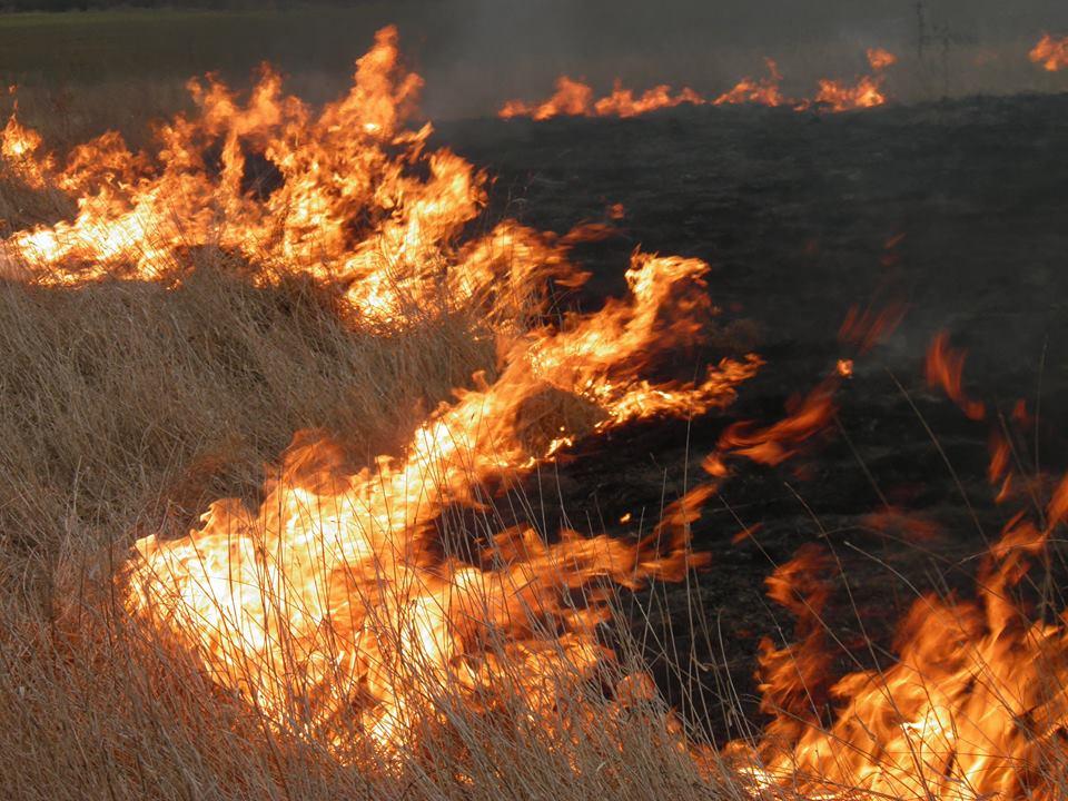 Муніципальна поліція Мукачева склала адмінпротоколи на мешканців міста, які спалювали сміття