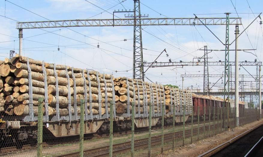 Затриманий потяг з незаконною деревиною відправили з Чопа в Мукачево