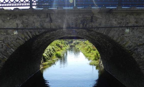 Водоканал Берегова оштрафували за забруднений канал Верке