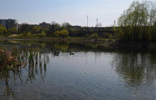 Прокуратура оскаржує до Вищого господарського суду рішення по справі озера «Кірпічка» в Ужгороді