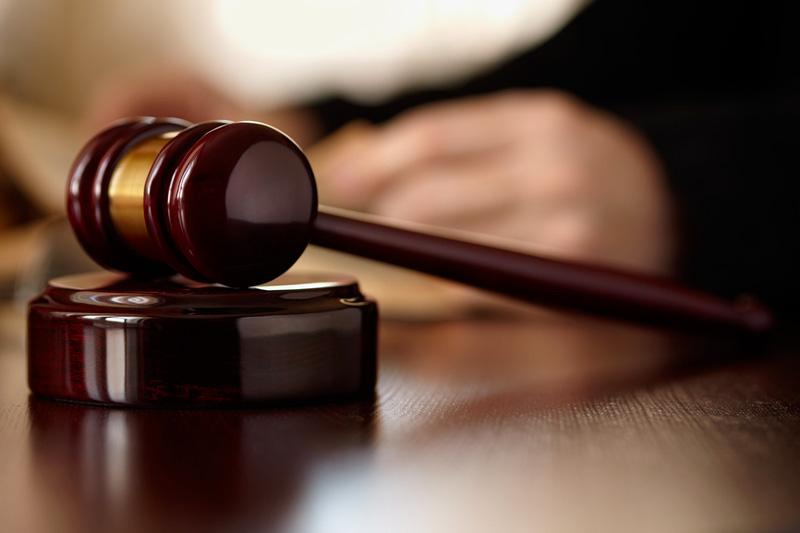 Ужгородець, який підозрюється у жорстокому вбивстві собаки, не з'явився на судове засідання