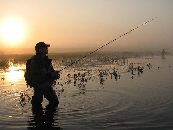 У Кольчині риболова смертельно вбило електрострумом