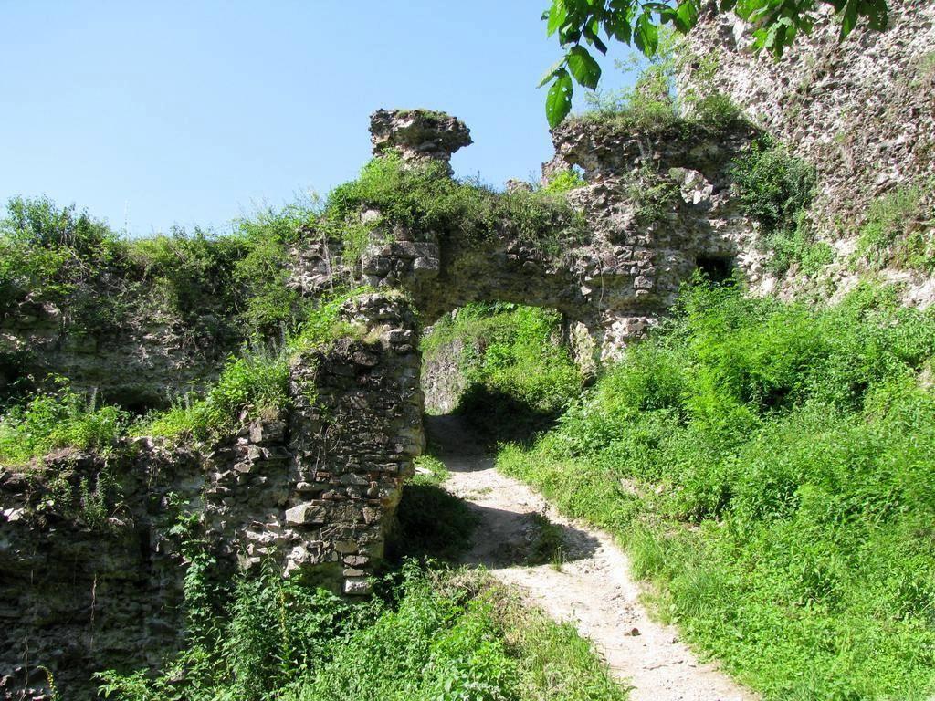 У Хустського замку може з'явитись комендант