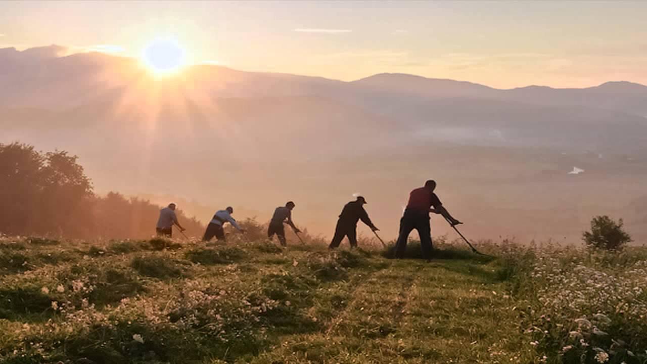 На Хустщині відбудеться етнофестиваль косарів