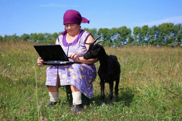 Закарпаття посіло перше місце в Україні за кількістю сільських мешканців, які мають доступ до Інтернету