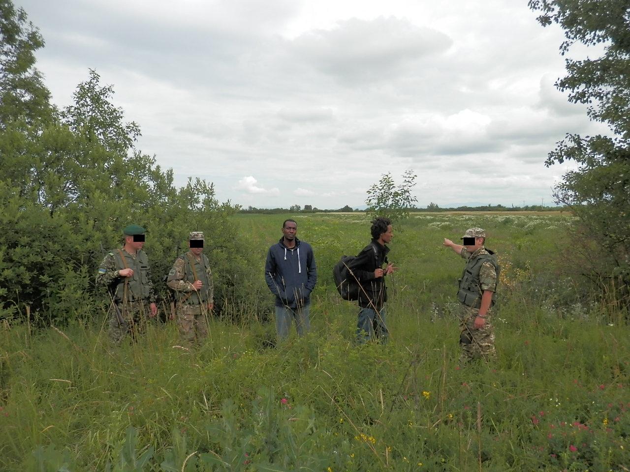 Прикордонники Мукачівського загону затримали нелегалів з екзотичних країн