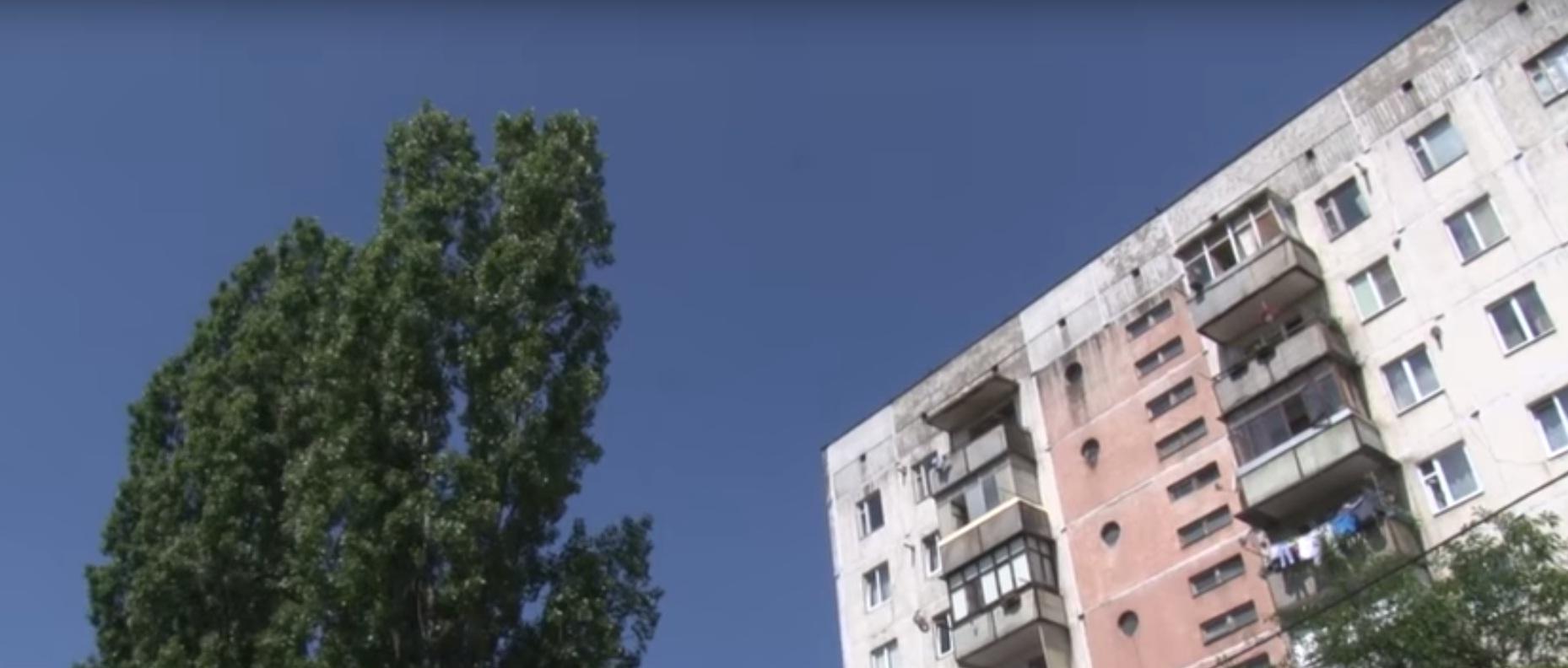 Мешканці ужгородських багатоповерхівок скаржаться на тополі, коріння яких руйнують покриття та комунікації