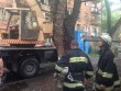 В Ужгороді завершили більшу частину робіт із ліквідації наслідків буревію
