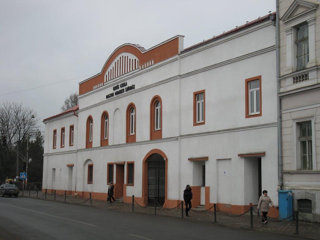 Закарпатський угорський драмтеатр отримав нового керівника
