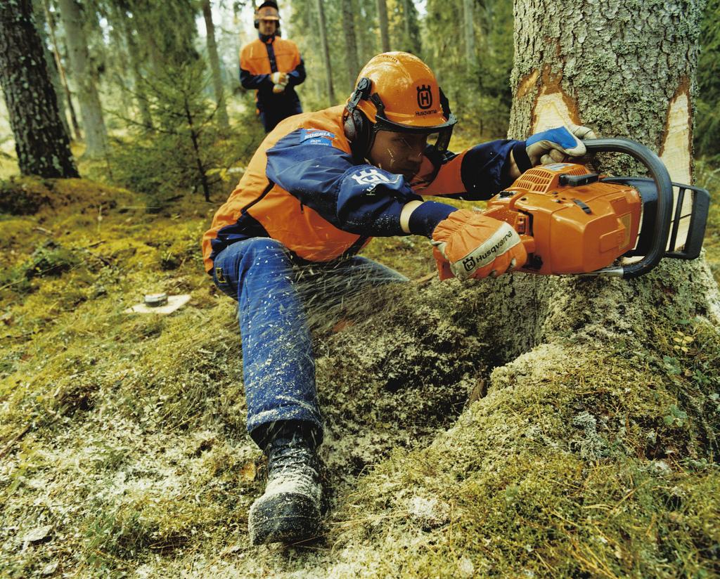 На Закарпатті відбудеться змагання найкращих вальщиків лісу