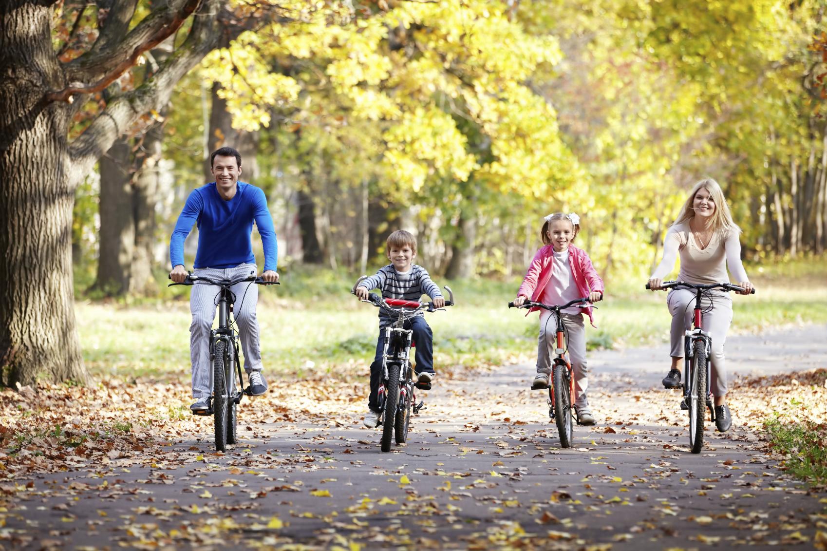 Купить велосипед  веломагазин горные велосипеды bmx