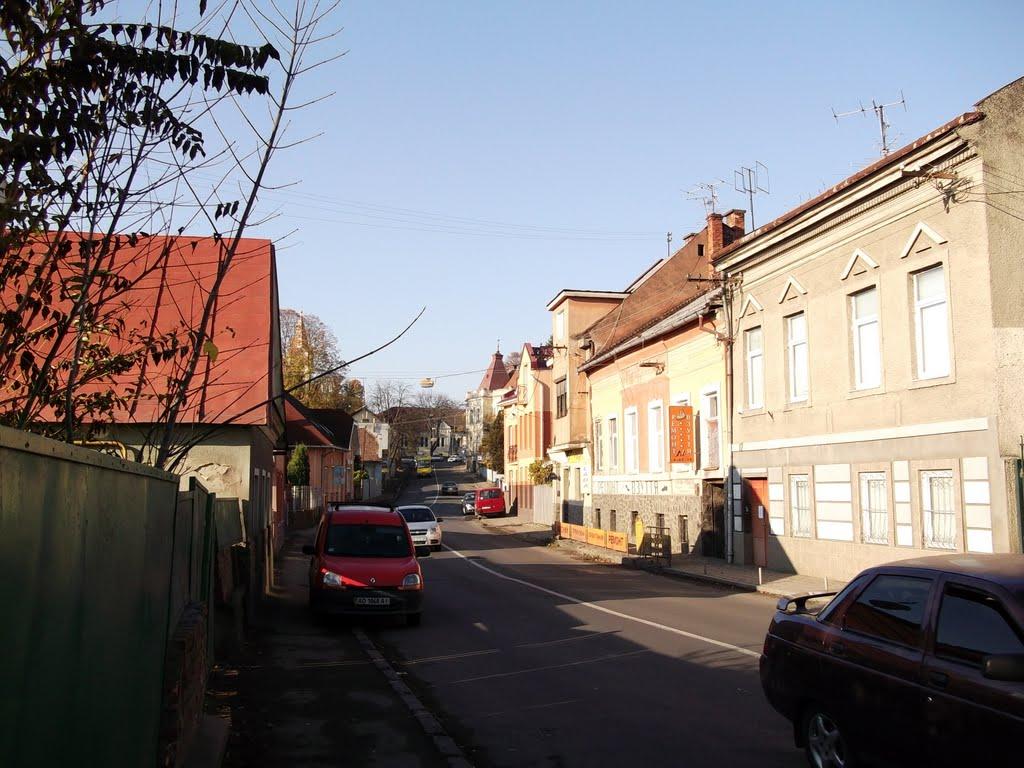 В Ужгороді на один день перекриють рух на вулиці Підгірній