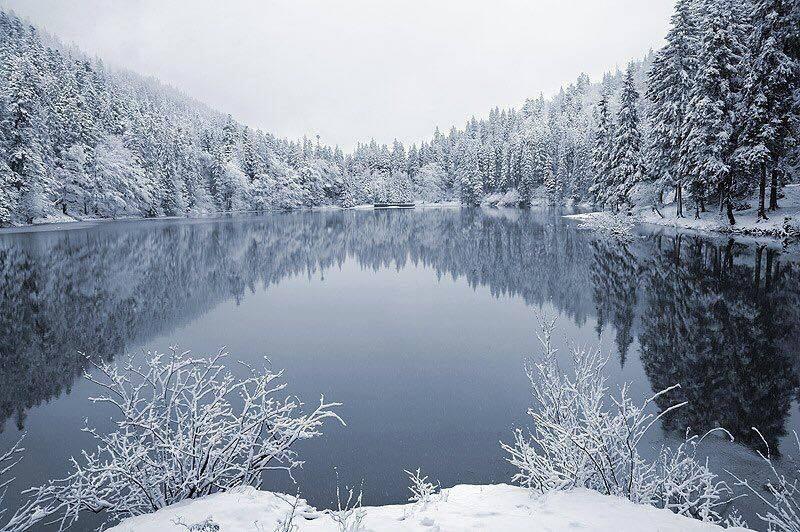 Синоптики розповіли якою буде зима на Закарпатті